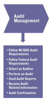 Image displaying components of audit management