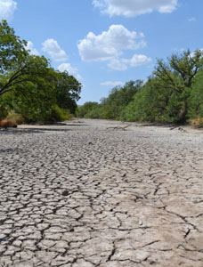 Image of a dry river bed