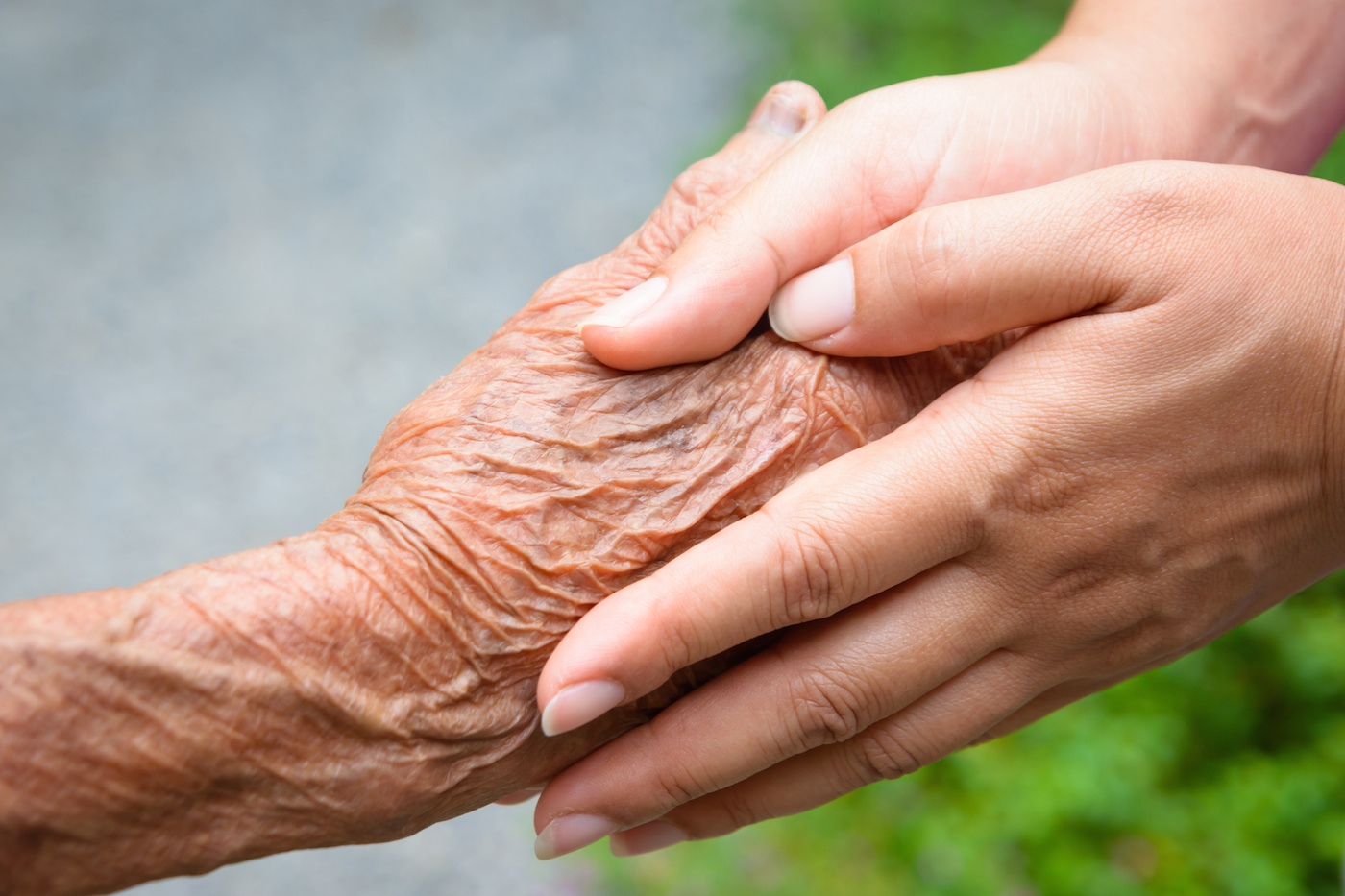 Image result for elderly hand hold
