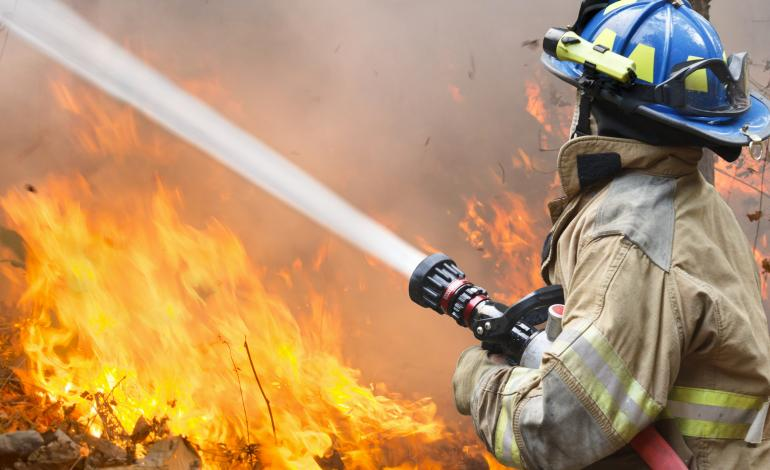A fireman with a hose putting out a wildfire.