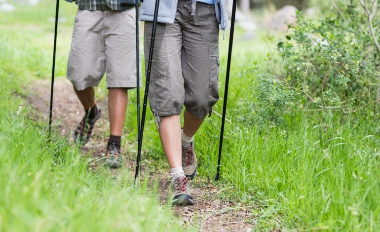 Two pairs of walking sticks were used on the trail.