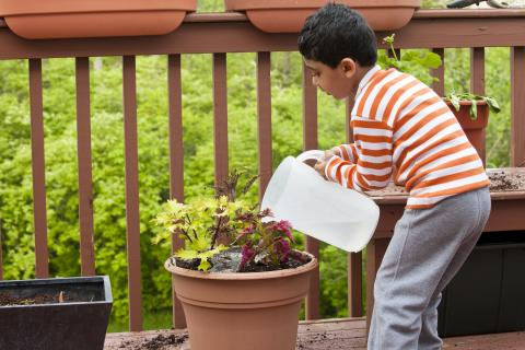 Boy watering potted plants on a deck.