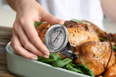 Checking internal temperature of whole turkey with meat thermometer