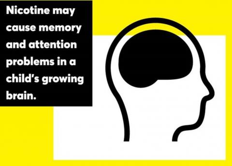 Illustration of head outline with brain: Nicotine may cause memory and attention problems in a child's growing brain
