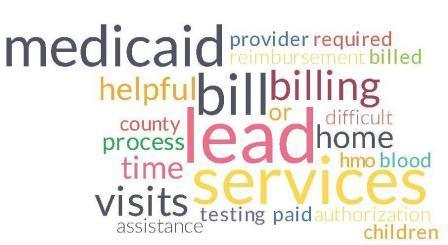 Word Cloud for Lead services reimbursement and Medicaid