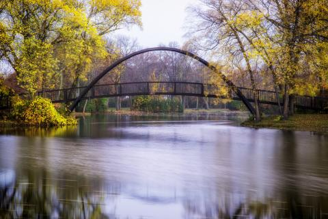 Tenny park arched bridge in the Fall