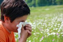 A child blows his nose with a tissue with flowers blooming in the field.