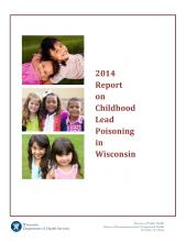 Report cover - 2014 Childhood Lead Poisoning in Wisconsin