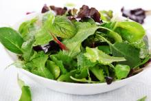 Bowl of salad lettuces