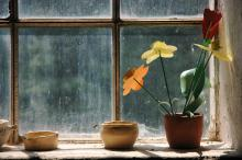 Clay pots and planter with flowers on an old windowsill