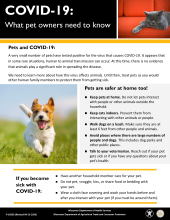 COVID-19: What pet owners need to know