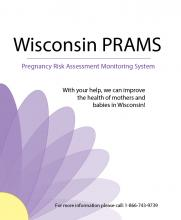 Wisconsin PRAMS Report Cover