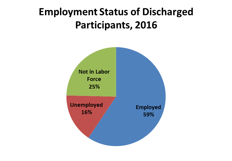 Pie chart depicting employment status of discharged substance us participants 2016